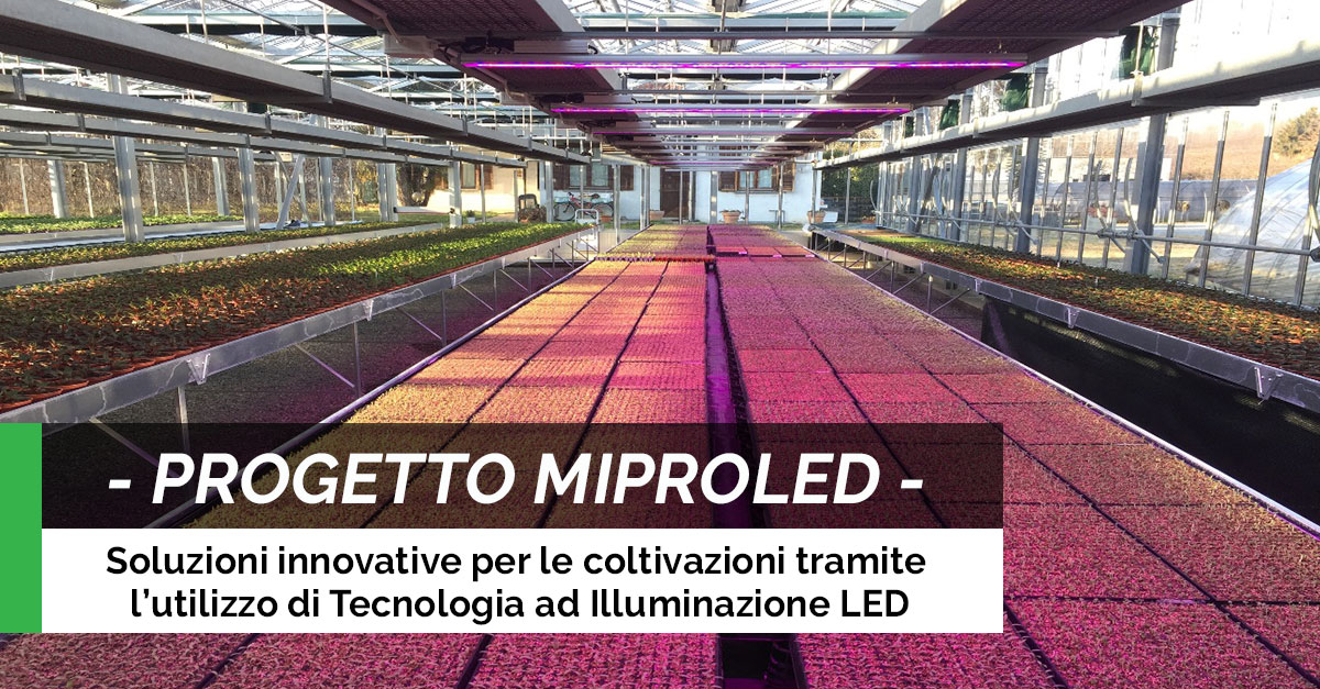 PROGETTO-MIPROLED